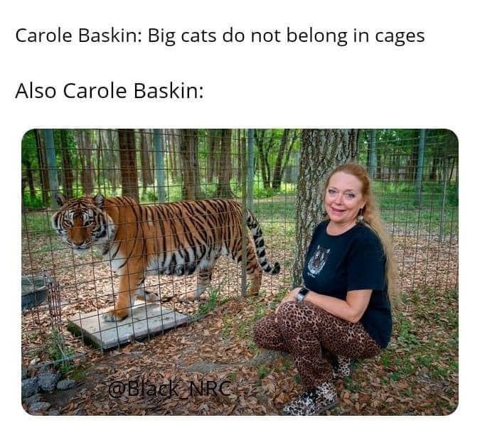 Netflix Tiger King Meme
