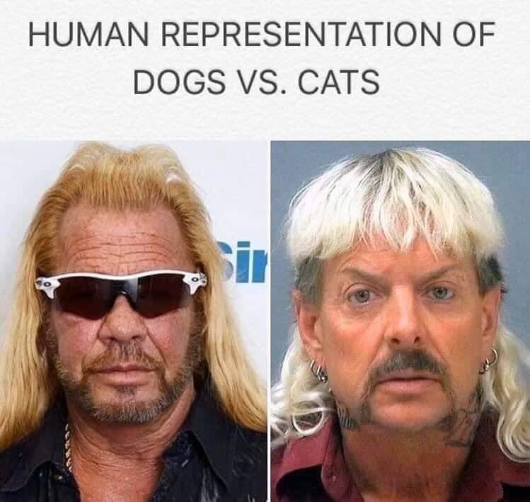 funny netflix tiger king memes