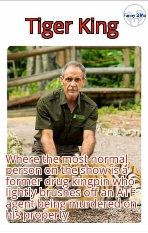 meme about tiger king docuseries