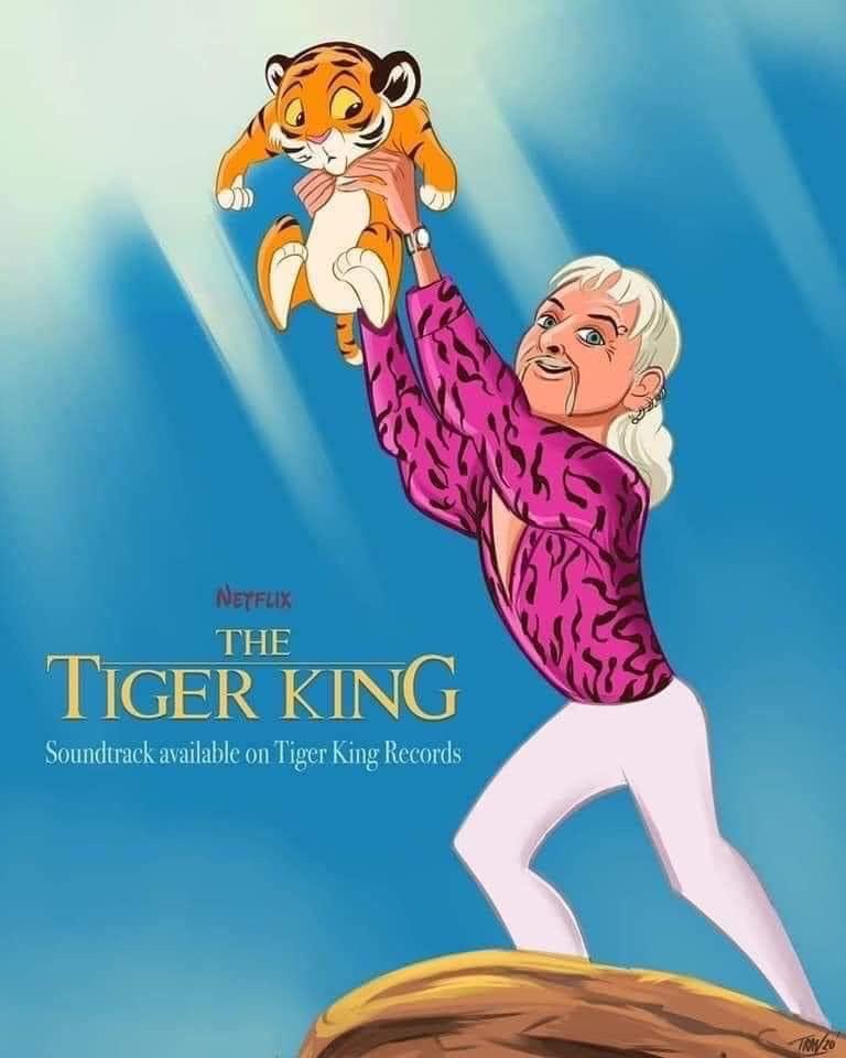 meme tiger king on netflix