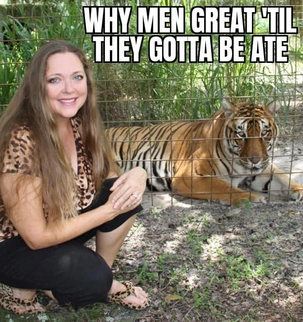 memes about carole baskin from tiger king