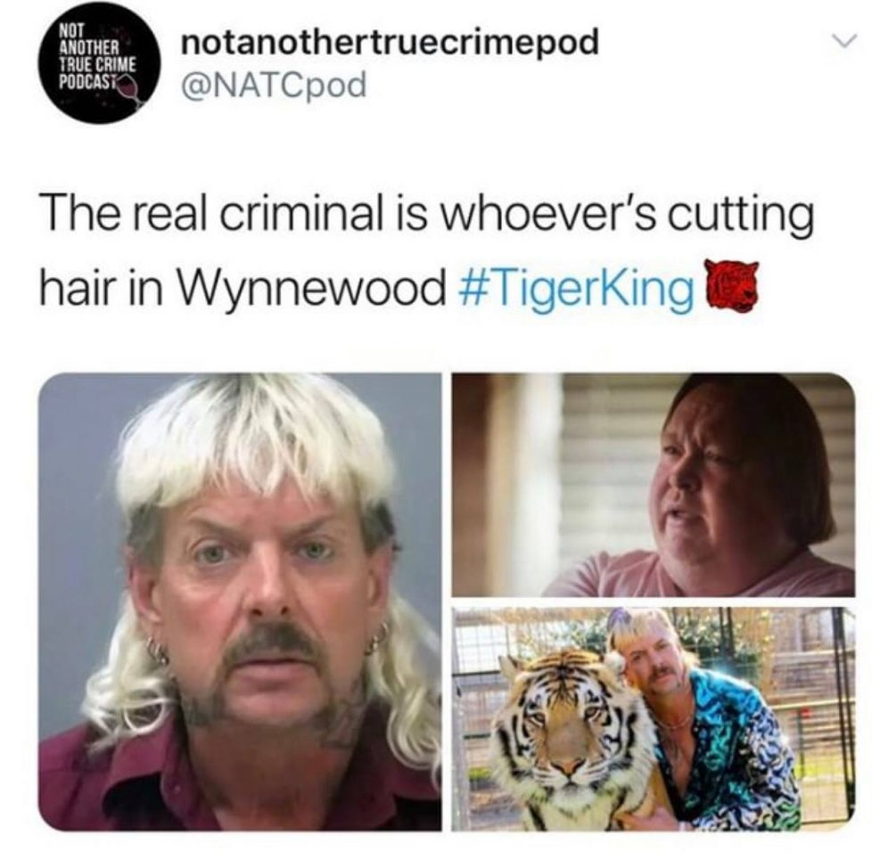 memes about tiger king
