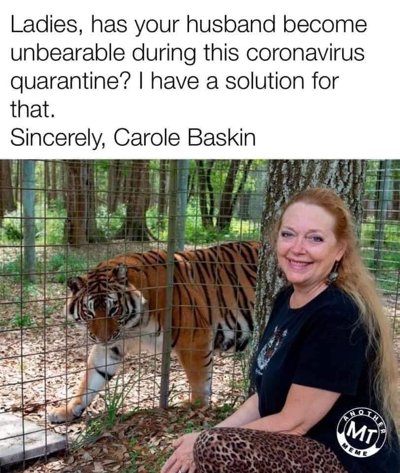 tiger king carole baskin memes