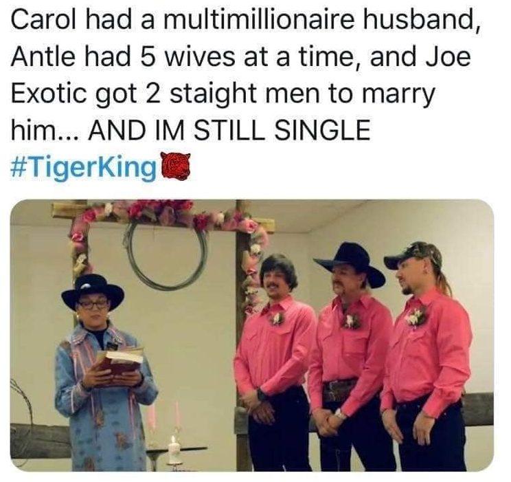 tiger king meme twitter