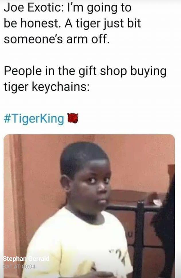 tiger king memes facebook