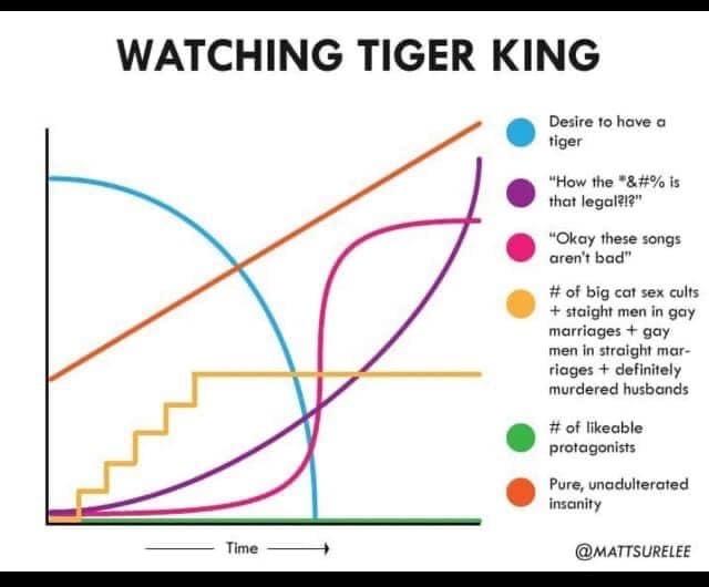 tiger king netflix show meme