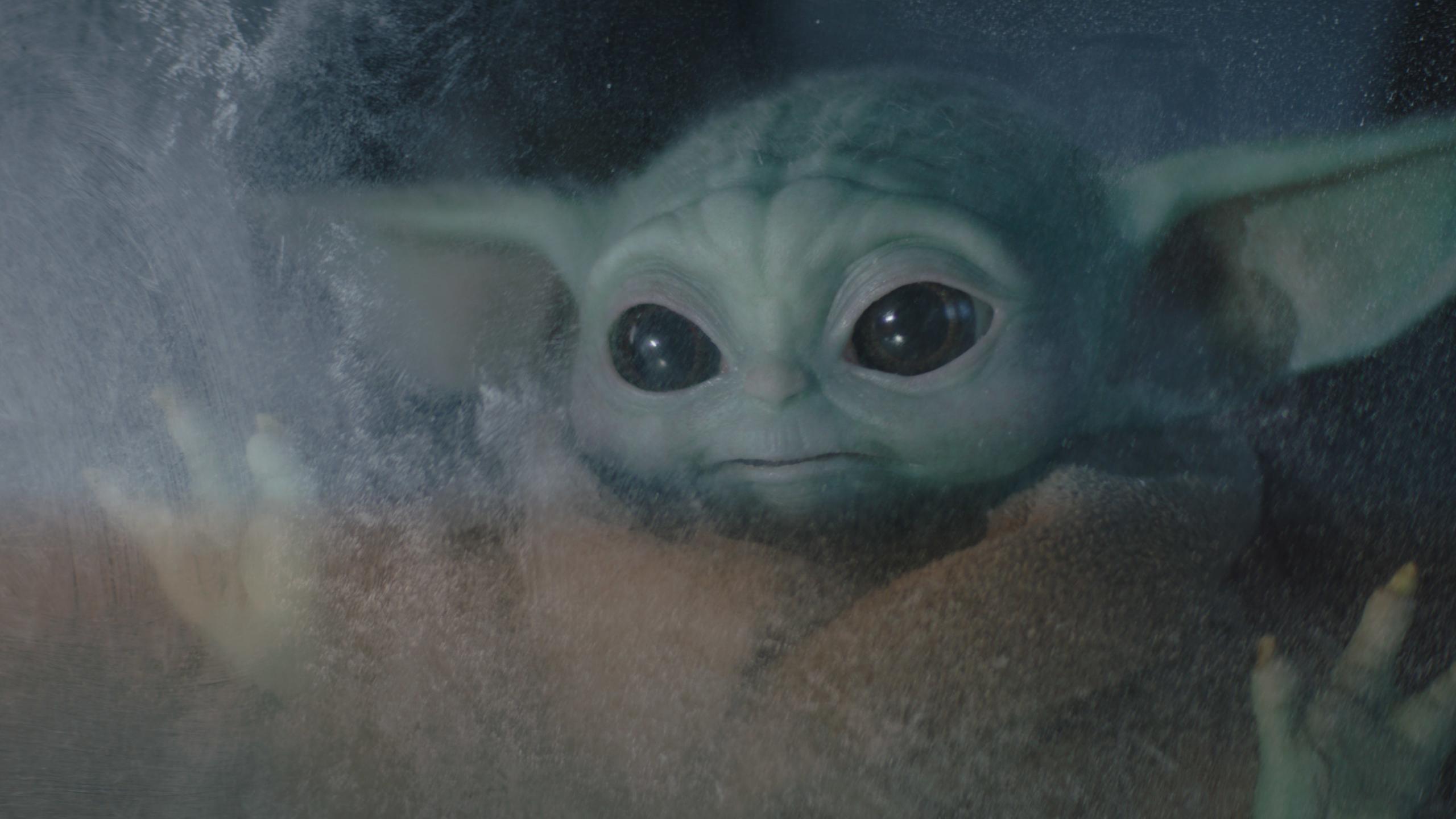 The Mandalorian Season 2 Episode 2 Baby Yoda